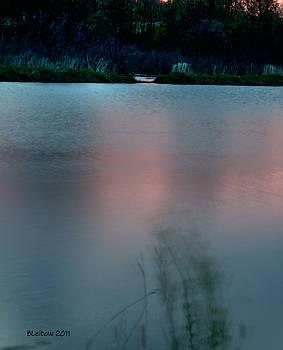 Aqua by Brenda Leitow