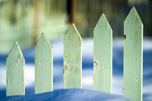 Aqua Fence by Lorna Rande