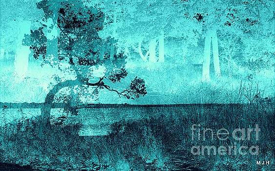 Aqua Vision by Mickey Harkins