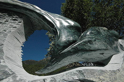 Aquila by Emanuele Rubini