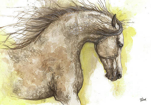 Arabian horse 2017 07 24 by Angel Tarantella