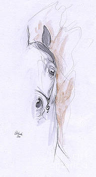 Angel Ciesniarska - arabian horse drawing 2015 09 04