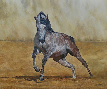 Arabian horse in the desert by Erna Goudbeek