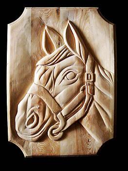 Sethu Madhavan - Arabian horse