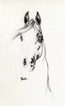Angel Ciesniarska - Arabian horse sketch 2014 05 29d