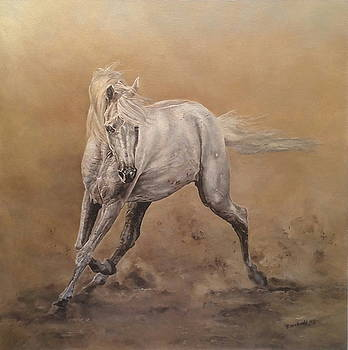 Arabian Horse...Free Spirit by Erna Goudbeek