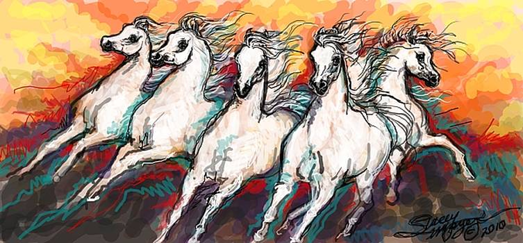 Arabian Sunset Horses by Stacey Mayer