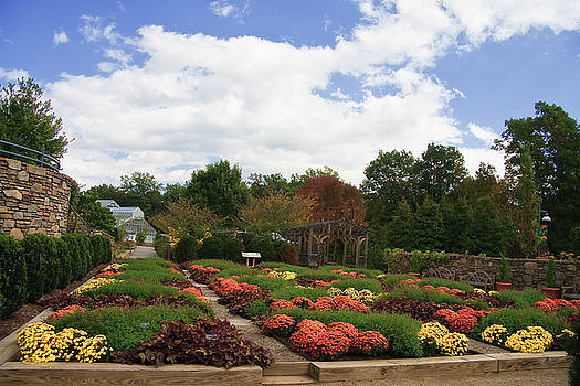 Jill Lang - Arboretum in North Carolina