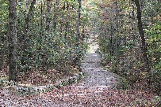 Allen Nice-Webb - Arboretum Pathway