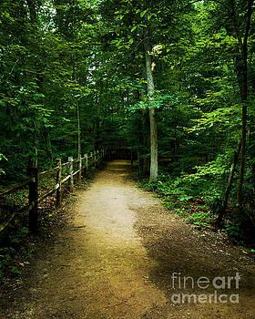 Jeff McJunkin - Arboretum Trail