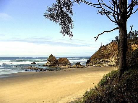 Arcadia Beach by Will Borden