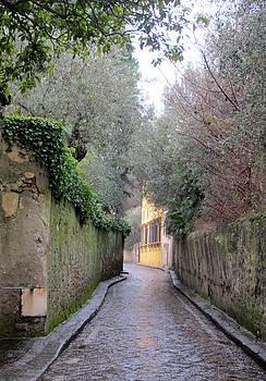 Arcetri -Firenze by Simi Berman