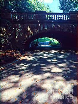 Arch of Dreams - Central Park by Miriam Danar
