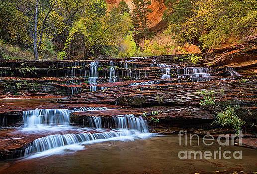 Jamie Pham - Archangel Falls in Autumn