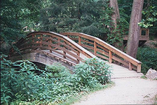 Allen Nice-Webb - Arched Bridge