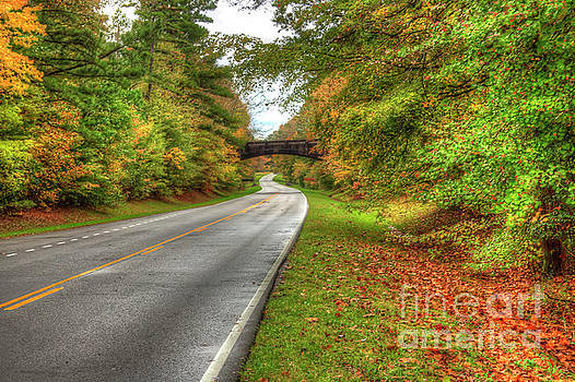 Larry Braun - Arched Bridge over the Parkway