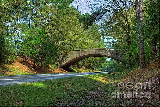Larry Braun - Arched bridge overpass