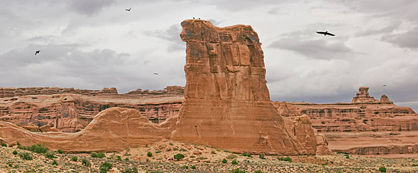 Arches La Sal Viewpoint 1 by Peter J Sucy