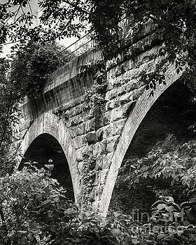 Arches Under The Bridge Black and White by Tom Gari Gallery-Three-Photography