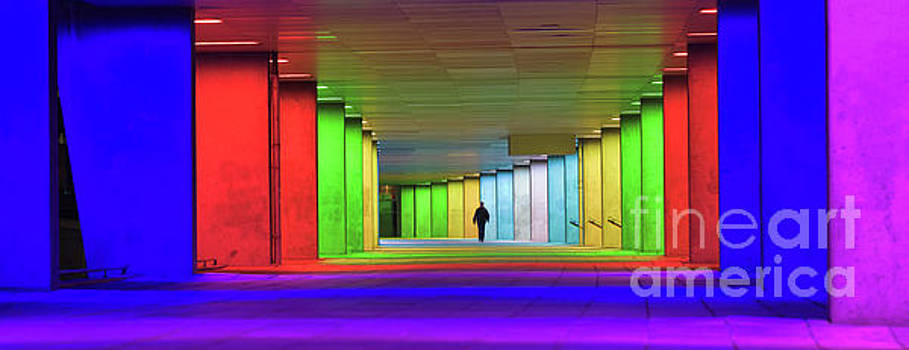 Architectural Institute, Rotterdam by David Bleeker