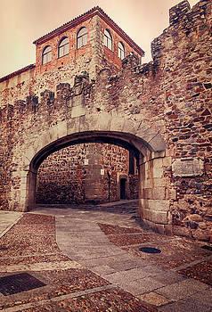 Arco de la Estrella Caceres Spain  by Joan Carroll