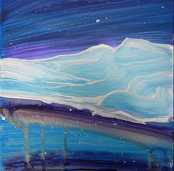 Arctic 1 by Pam Van Londen
