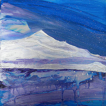 Arctic 2 by Pam Van Londen