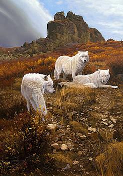 Arctic Council by Derek Wicks
