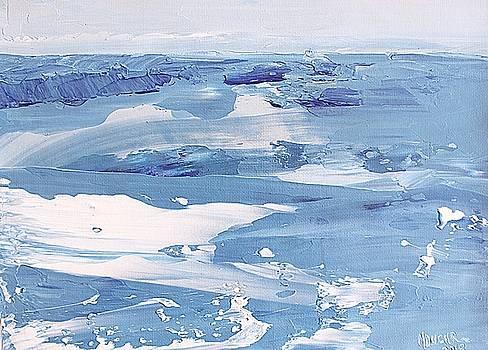 Arctic Ocean by Norma Duch