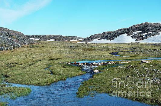 Arctic Wilderness by Nina Stavlund
