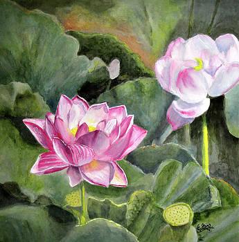 Arising Beauty by Eileen  Fong