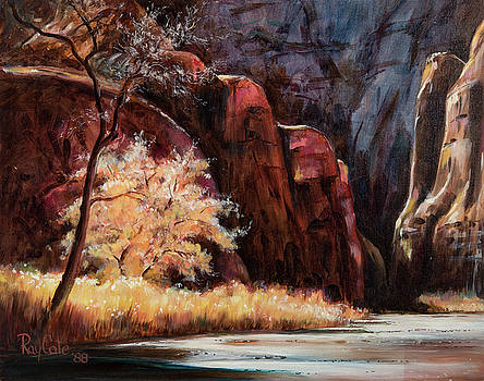 Arizona Canyon by Ray Cole