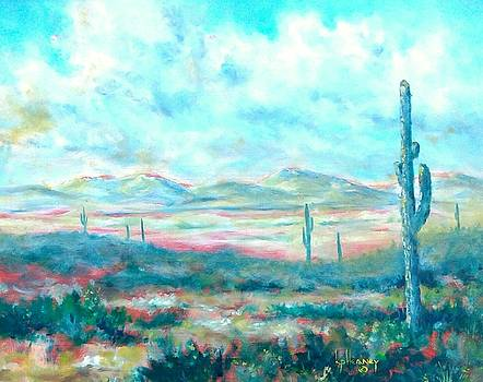 Arizona Desert by Kevin Heaney