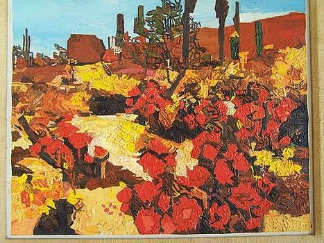 Arizona Highways by Willy Brandt