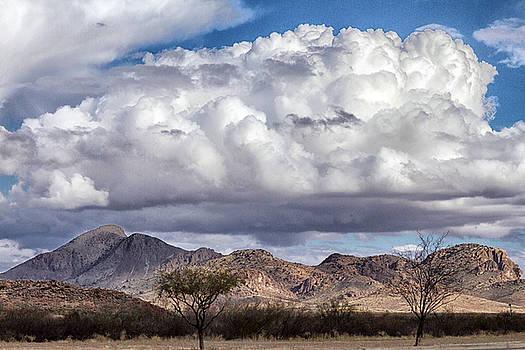Arizona Mountain Landscape by Deb Henman