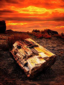 Arizona Sky  ... by Chuck Caramella