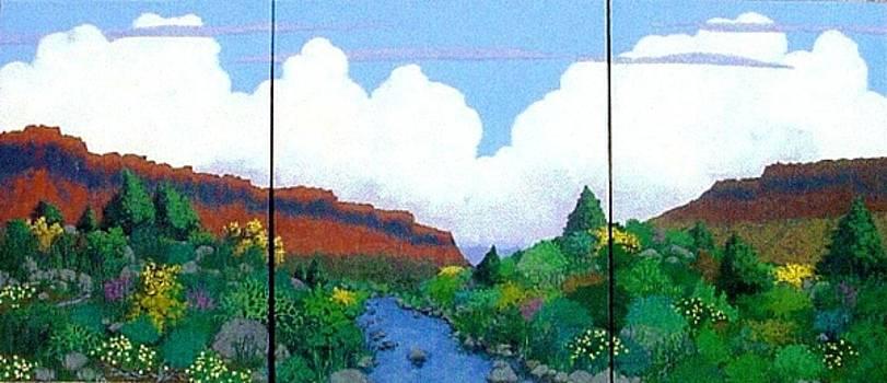 Arizona Sky by Bernard Goodman