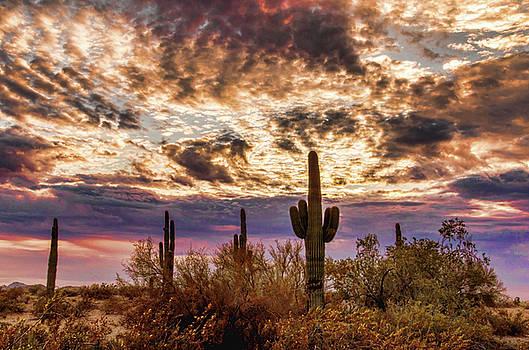 Arizona Sky by Ken Mickel