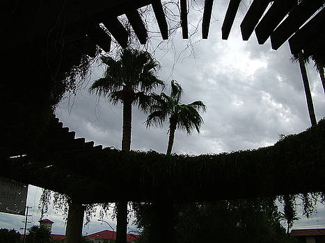 Arizona Sky by Vickie Roche