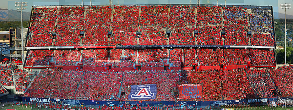 Arizona Stadium Triptych Part 1 by Stephen Farley