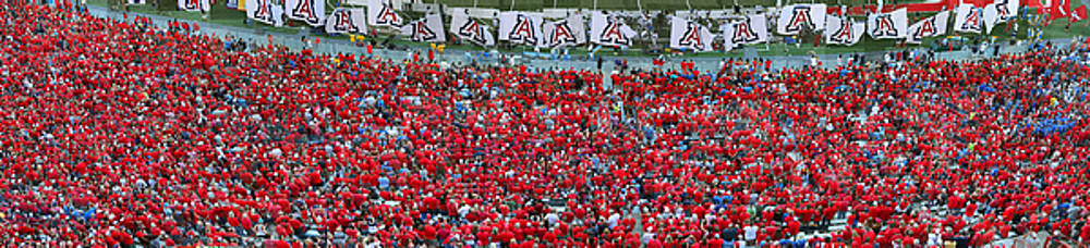 Arizona Stadium Triptych Part 3 by Stephen Farley