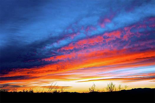 Arizona Sunset   by Terry Medaris