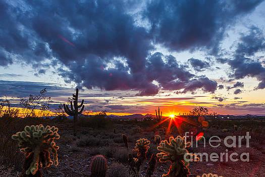 Arizona Sunset #1 by Studio Laurent