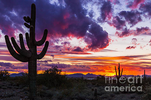 Arizona Sunset #2 by Studio Laurent