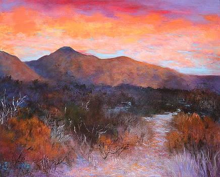 Arizona Sunset 3 by M Diane Bonaparte