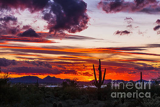 Arizona Sunset #3 by Studio Laurent