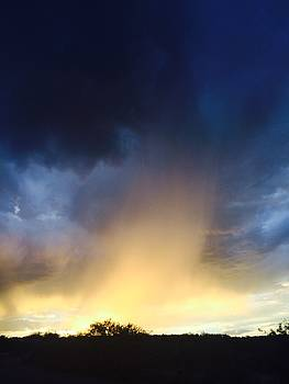 Arizona Sunset by Betsy Moran