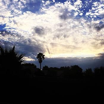 Arizona Sunset by Jen Lynn Arnold