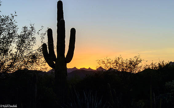 Arizona Sunset by Mike Ronnebeck