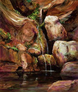 Arizona Waterfall by Ray Cole